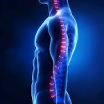 spinal injury claims